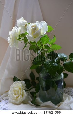 vase with delicate white roses on a light drape