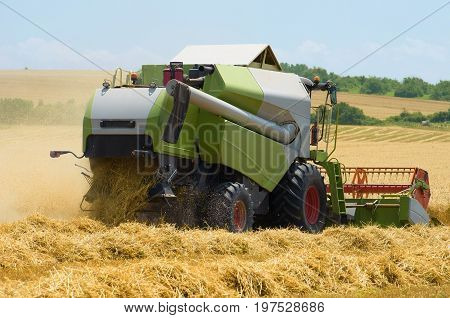 Combine harvester agriculture machine harvesting golden ripe wheat field.
