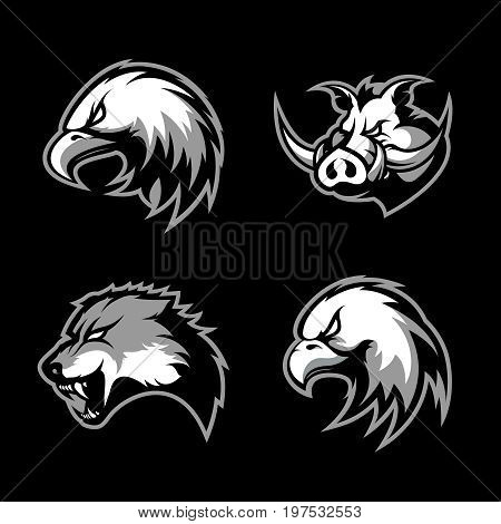 Furious boar, wolf, panther and eagle head sport vector logo concept set isolated on black background. Modern team badge design. Premium quality wild animal t-shirt tee print illustration.