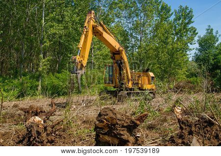 Deforestation of forest. Excavator used to dig up tree-stumps and roots after the forest was removed.