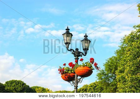 Street light lamp post with baskets of red flowers