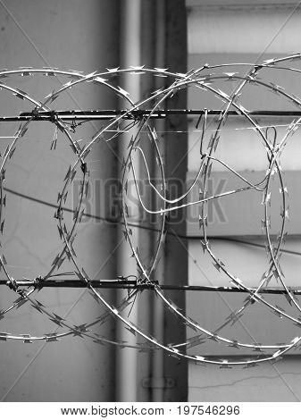 BLACK AND WHITE PHOTO OF METAL RAZOR WIRE FENCING