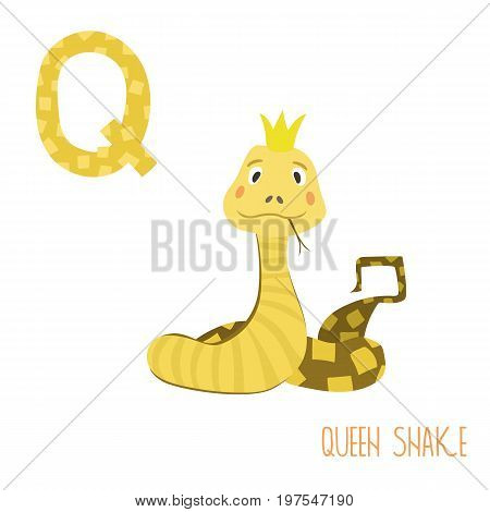 Vector kids illustration of cute animal alphabet. Letter Q for the Queen snake. Cartoon cute snake in crown isolated on white background for child illustration, baby shower, birthday card, invitation, T-shirt. Preschool and school reading study.
