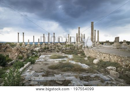 Pillars in the roman ruins with dramatic cloudscape in Tyre, Sour, Lebanon