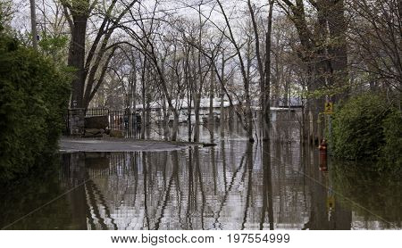 Close up landscape view of flood waters rising over a paved road in front of properties with trees foliage and the houses partly submerged in the distance in the West Island of Montreal, Quebec on a bright overcast day in May.