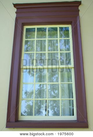 Trees Reflected In Colonial Window