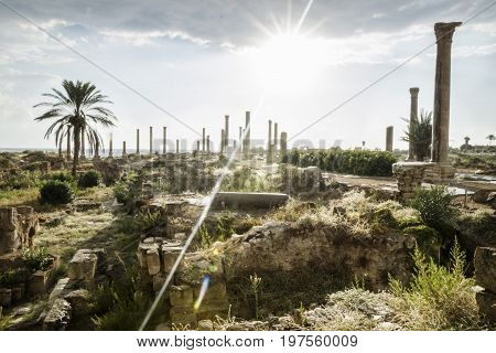 Sunbeam after rain in ruins with pillars in Tyre, Sour, Lebanon