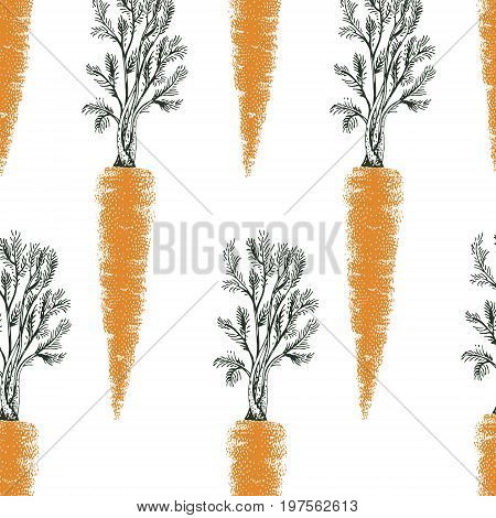 Carrot hand drawn vector seamless pattern. Vintage Vegetable engraved style object. Can be use for menu, label, farm market