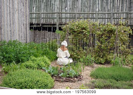 A woman tends a vegetable garden in Fort Michilimackinac, at the Colonial Michilimackinac State Park, in Mackinaw City, Michigan, during June.
