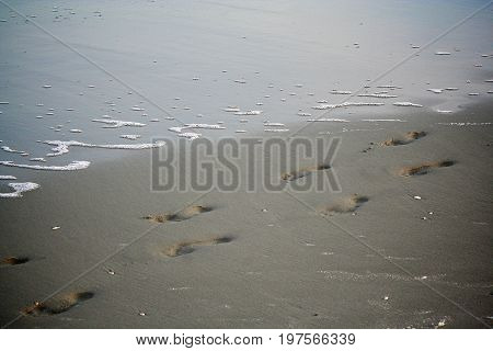 Footprints along the water's edge at the beach