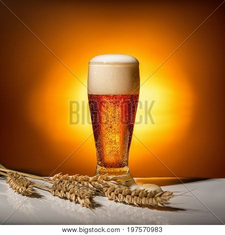Dark Glass Beer With Ears Of Wheat On Light Background, Oktoberfest Concept