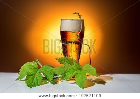 Dark Glass Beer With Twig Of Hop On Light Background, Close Up
