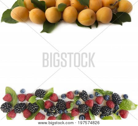 Ripe apricots raspberries blueberries blackberries mint and basil leaves. Berries at border of image with copy space for text. Background berries. Top view. Various fresh summer berries on white background.