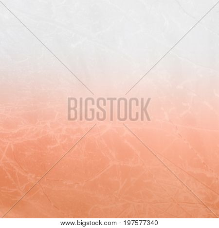 Foggy blurry pink background of tree branches in the snow