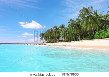 View of beautiful beach with tropical palms at resort