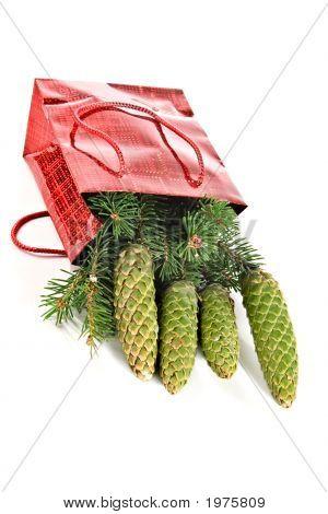 Christmas Souvenir-Fur-Tree