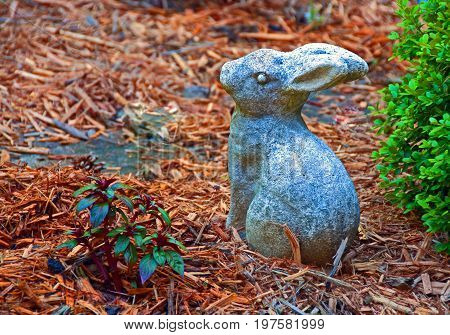 A photo of a cement rabbit sitting in a mulched flower garden