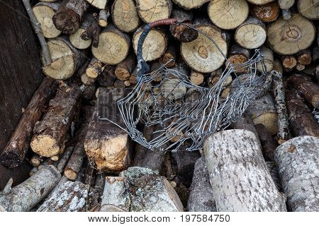 Sawn Wood Trunks Stacked In A Barn