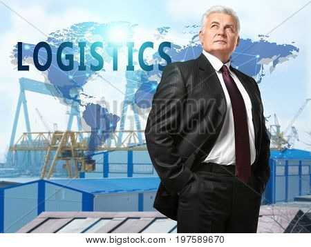 Mature manager and dock cranes on background. Wholesale and logistic concept