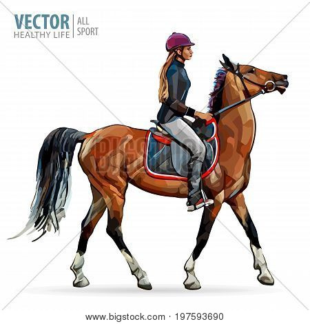 Horse with rider. Jockey on horse. Horse riding. Woman on horse. Sport. Vector Illustration