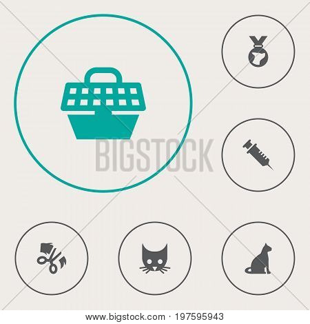 Collection Of Pet Crate, Medallion, Cat And Other Elements.  Set Of 6 Pets Icons Set.