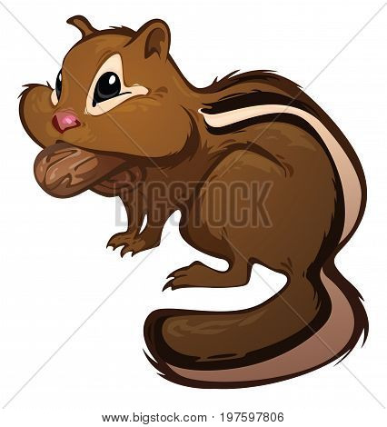 A cute Chipmunk, available as a vector file