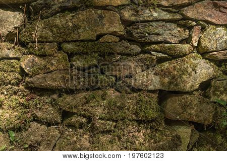 Old stone background. Aged stone surface for design. Texture of gray granite stone wall. Stone Texture with Moss and Lichen. Old brick wall background colors.