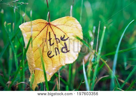 Yellow leaf with inscription THE END on background of green grass. Autumn concept. The end of summer, beginning of autumn.