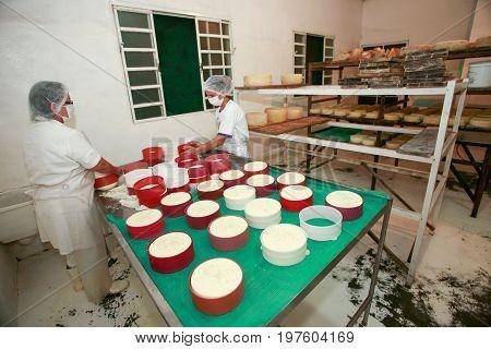 Making Artisanal Cheese