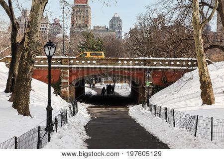 NEW YORK - FEBRUARY 18:  Winter day in Central Park in New York City , USA on February 18, 2015
