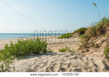 Coquina Beach on the Outer Banks in North Carolina at Cape Hatteras National Seashore.