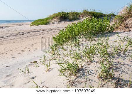 Coquina Beach at Cape Hatteras National Seashore.