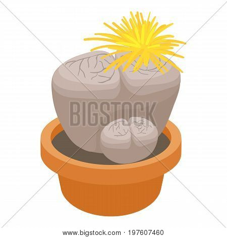Living stone cactus icon. cartoon illustration of living stone cactus vector icon for web