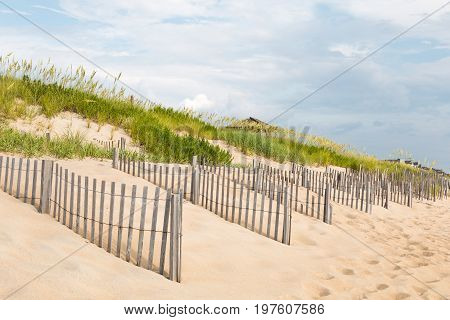 Sand dunes, beach grass and fences on the beach in Nags Head, North Carolina.