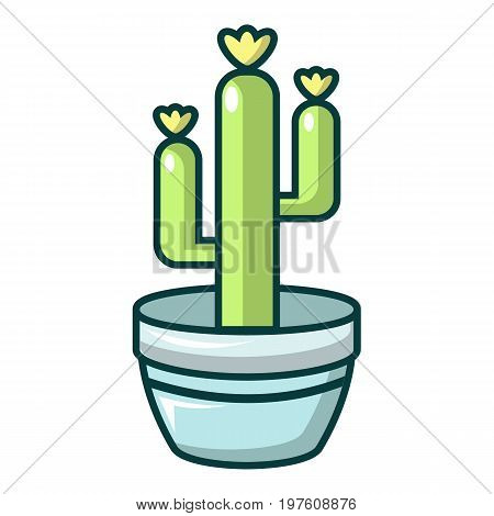 Saguaro cactus icon. Cartoon illustration of saguaro cactus vector icon for web design