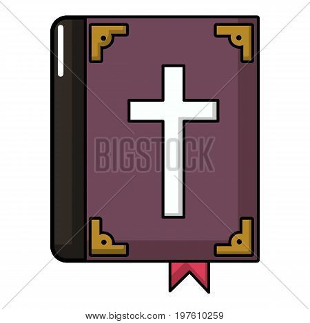 Bible icon. Cartoon illustration of Bible vector icon for web design