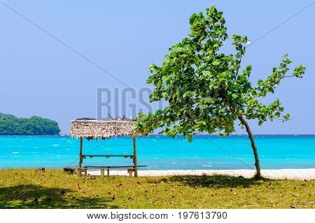 A tree and a table with bench under a leaf beach bungalow at Olry Bay - Espiritu Santo, Vanuatu
