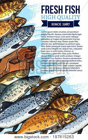 Fresh fish poster template for seafood or fish food market or fishing shop. Vector design of fisherman catch flounder, salmon and tuna, mackerel, marlin or pike and herring, navaga or perch and sprat