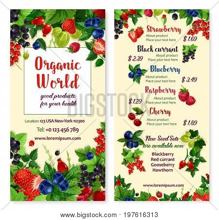Berries vector menu price card for strawberry, fresh raspberry or blackcurrant and red currant fruit, farm harvest of cranberry, briar of cherry and blackberry or organic gooseberry for berry market