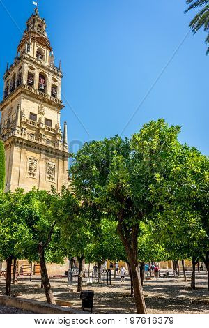 Bell Tower  And Patio De Los Naranjos Of The Mosque-cathedral, The Mezquita In Cordoba, Andalucia, S