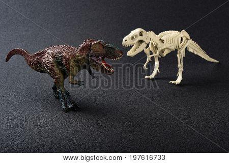 tyrannosaurus toy and tyrannosaurus skeleton on a dark background