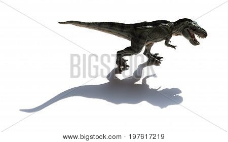 tyrannosaurus toy with shadow on a white background
