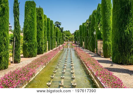 Tall Trees And Fountain In The Jardines, Royal Garden Of The Alcazar De Los Reyes Cristianos, Cordob