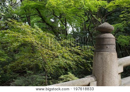 Close up of a concrete fence in Meiji Jingu Shinto Shrine in Tokyo. A forest including Japanese maple trees is in the background.