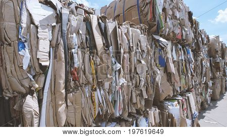 Compressed cardboard - recycling manufactory, close up, close up view