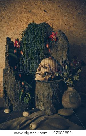 Still life with a human skull with desert plants cactus roses and dried flowers in a vase beside the timber.