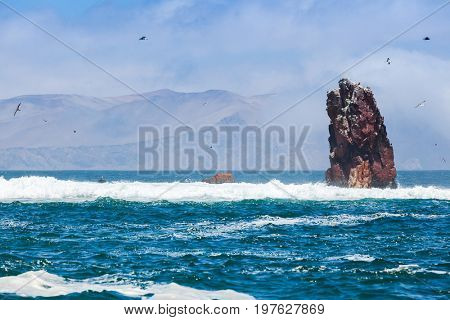 Islands balestas, South America, Peru