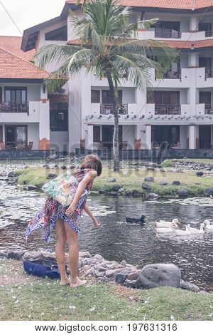 A woman in pareo feeds grey lag geese and goslings on the lake close to luxury hotel in Nusa Dua, tropical island of Bali.