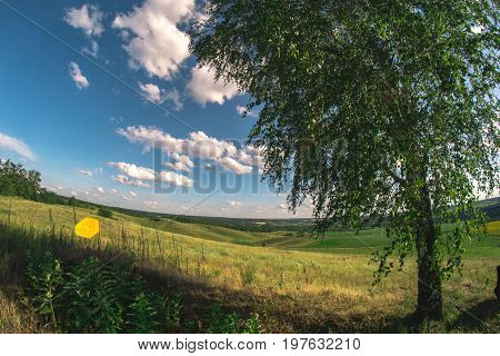 Summer landscape in nature on a sunny afternoon at a fisheye