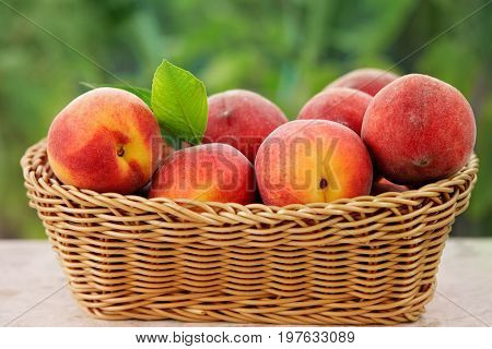 Basket of fresh peaches on a table